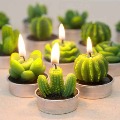 4 Pieces Romantic Cactus Scented Candle
