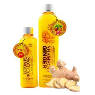 Protector Ginger Shampoo -260ml
