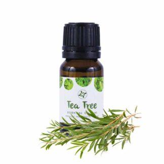 Skin Cafe Tea Tree Essential Oil - 10ml